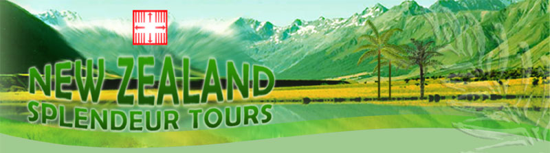 New Zealand tours with your private driver-guide
